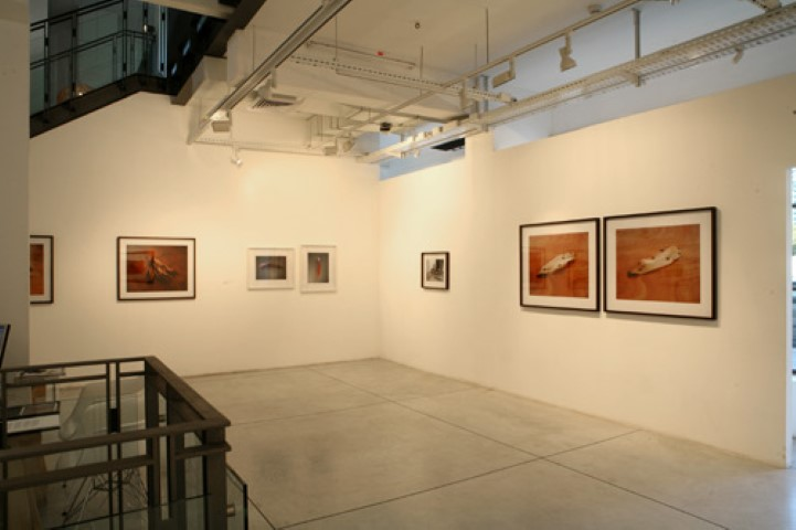 Fix, Installation View
