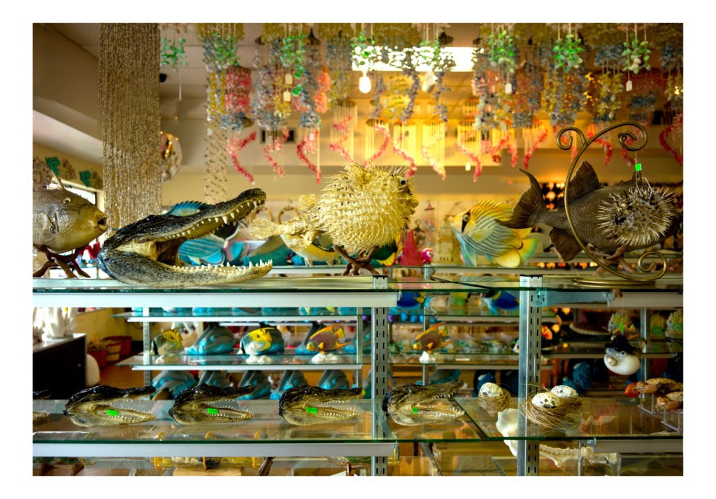 Dana Levy, Florida Store, from the Florida Store series, 2012, Photoprint, 90 x 60 cm