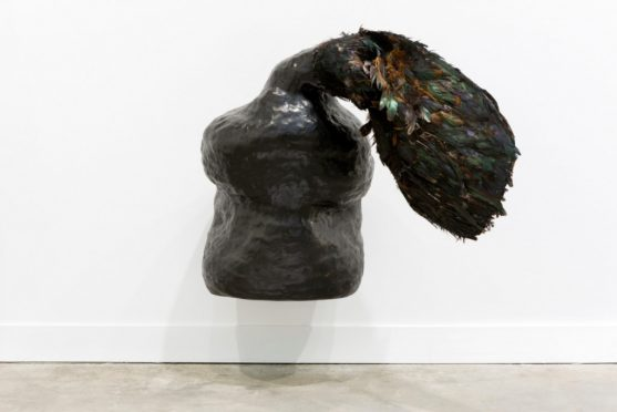 Solange-Pessoa-Ao-Ao-2017-bronze-fabric-and-feathers-dimensions-variable-1-557x372