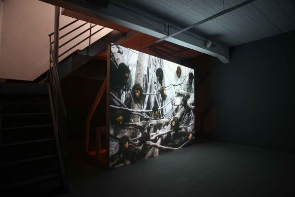 multiplory Installation view