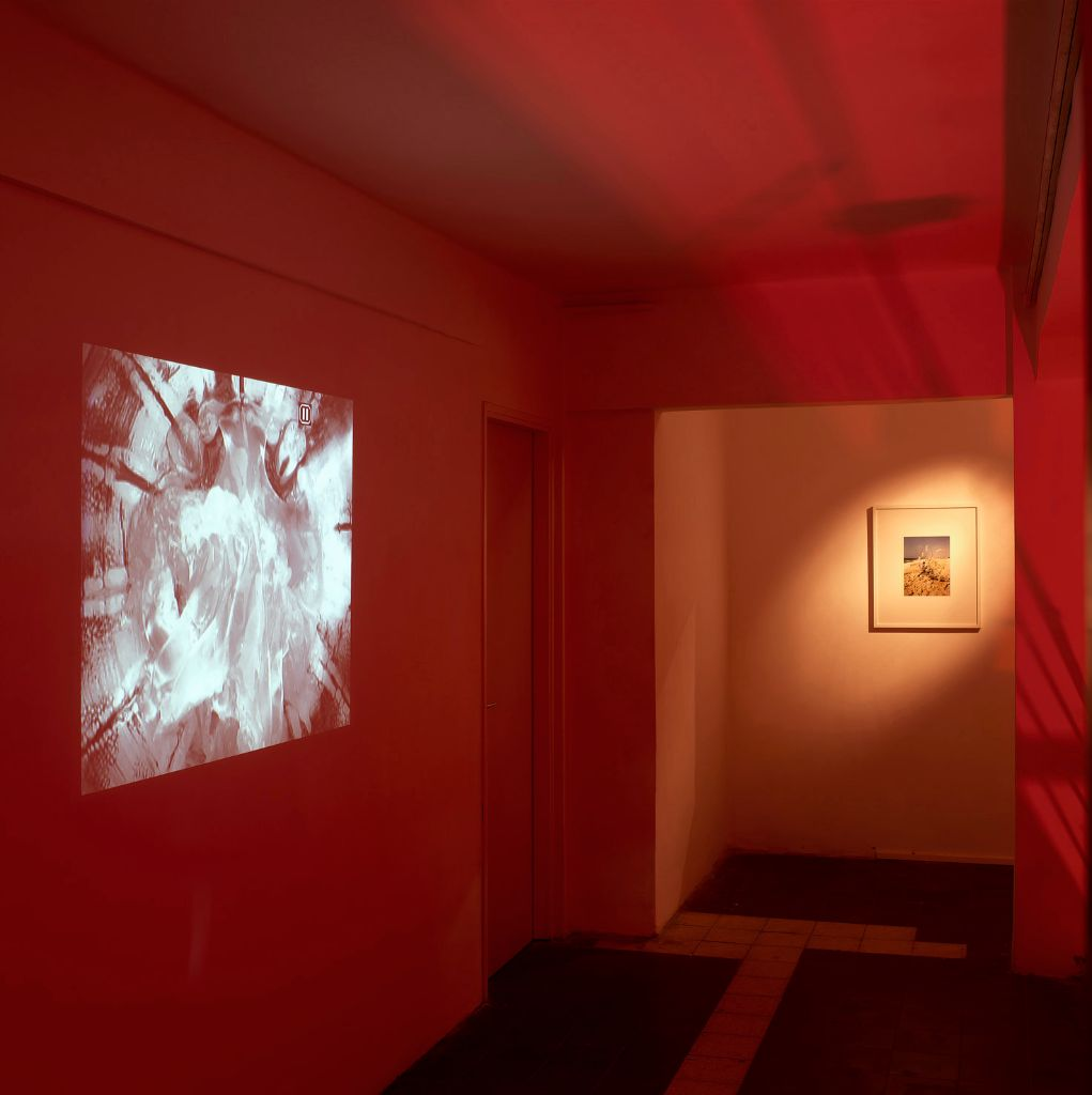 tropic of pulse Installation view