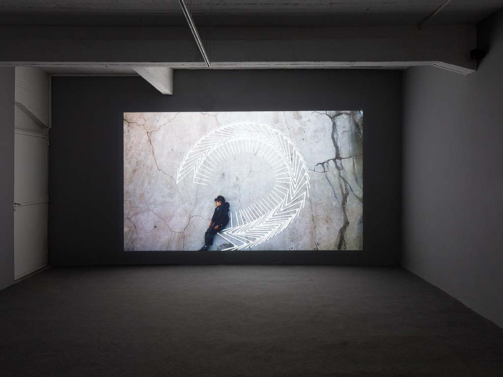 Anima, Installation view