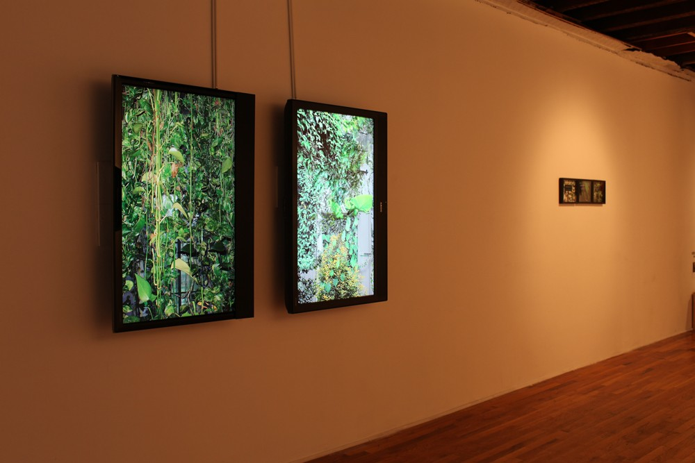 Dana Levy, The Abandoning, 2010, Installation view