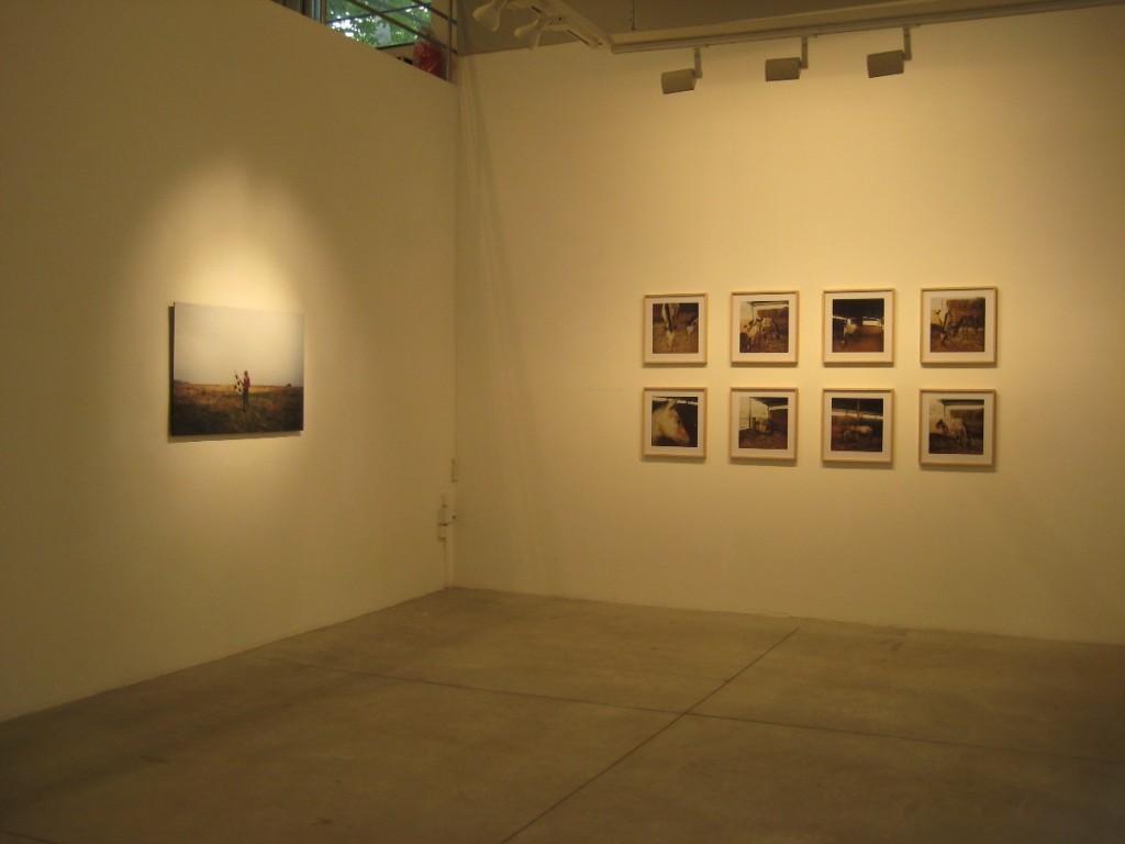 Amit Berlowitz Installation view