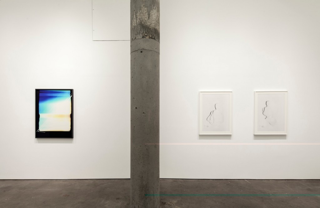 Division of the Vision, installation view, Yossi Milo Gallery, NY