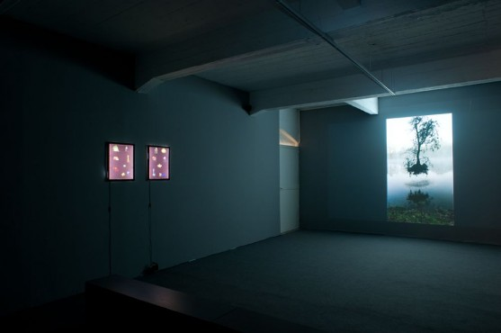 Dana Levy, The Fountain, installation view, Braverman Gallery Bakery, 2012