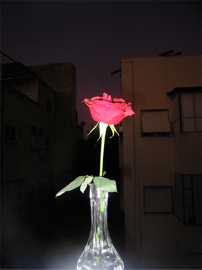 David Adika, Untitled, Tel Aviv 2010, 31 x 39 cm