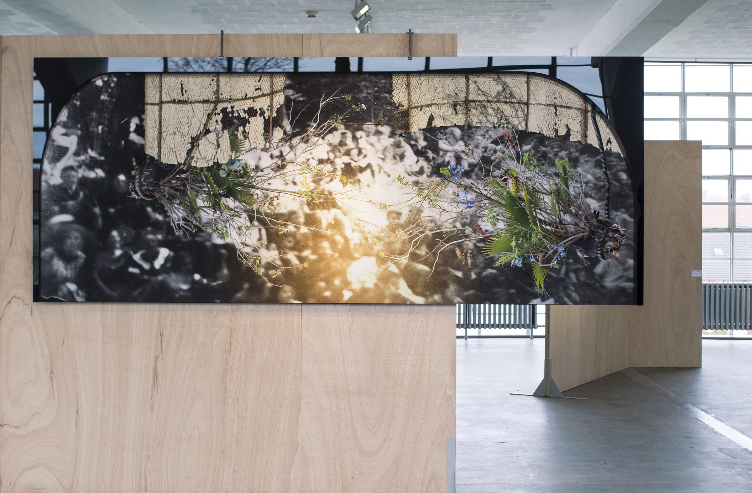 Ilit Azoulay, Transfer Agreement (White City Black City), installation view, Bauhaus Dessau 2019