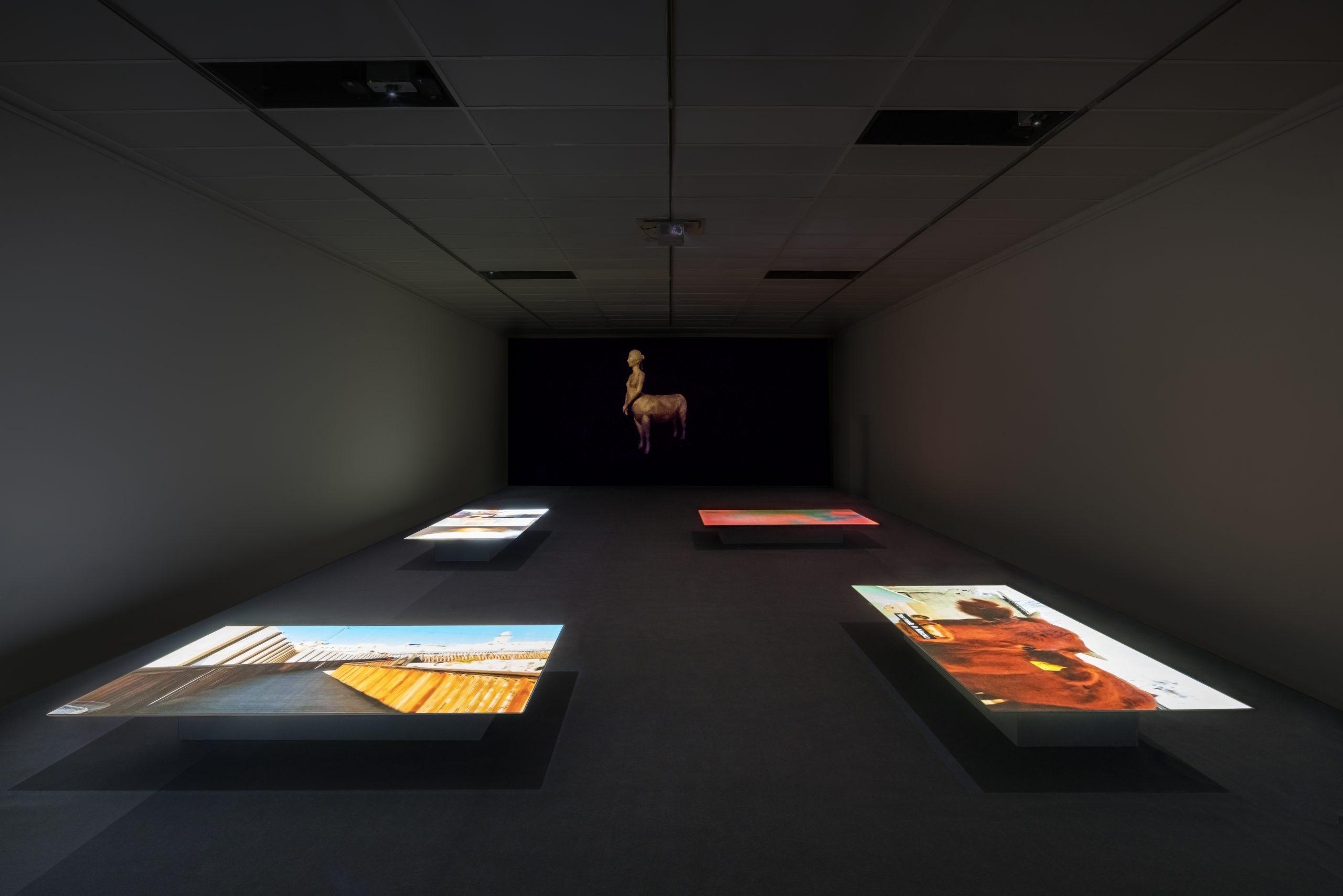 Nira Pereg, Installation view at Kunsthalle Darmstadt, 2017