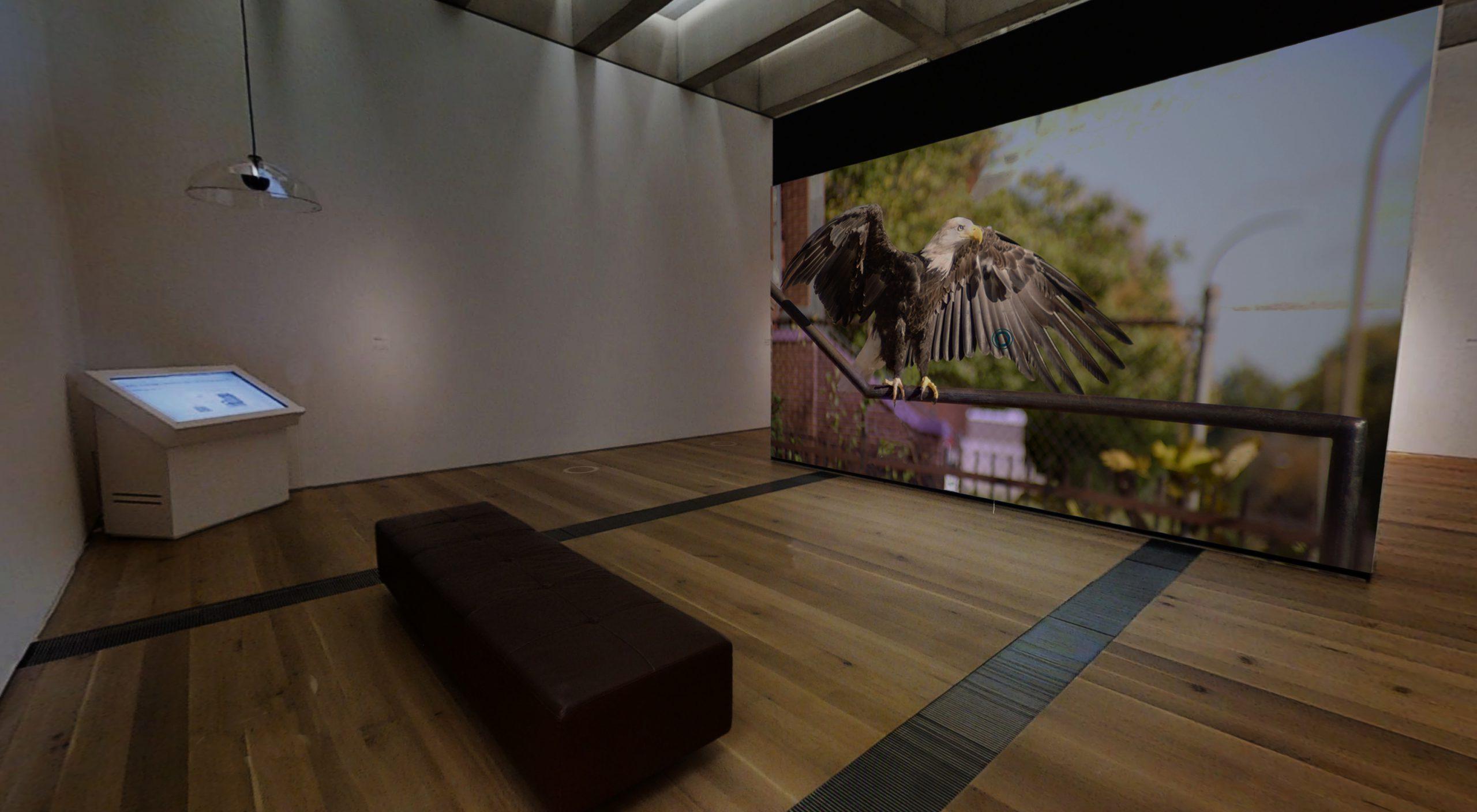 Dana Levy, Currents 119, installation view, Saint Louis Art Museum, April 2021